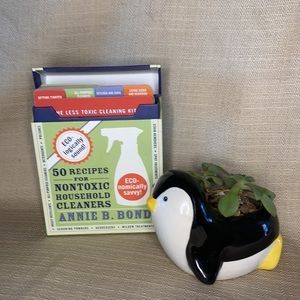 Eco-Clean Deck | 50 Recipes for Non-Toxic Cleaners